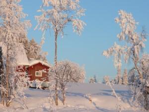 Laponie 2009 158