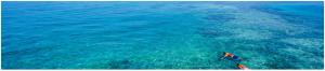 Martinique bleue