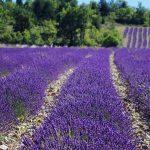 Décourez Dieulefit dans la Drôme